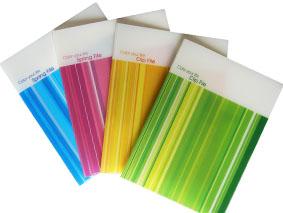 彩色膠Folder印刷